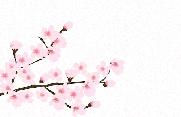 Abstract floral sakura flower japanese natural background Premium Vector