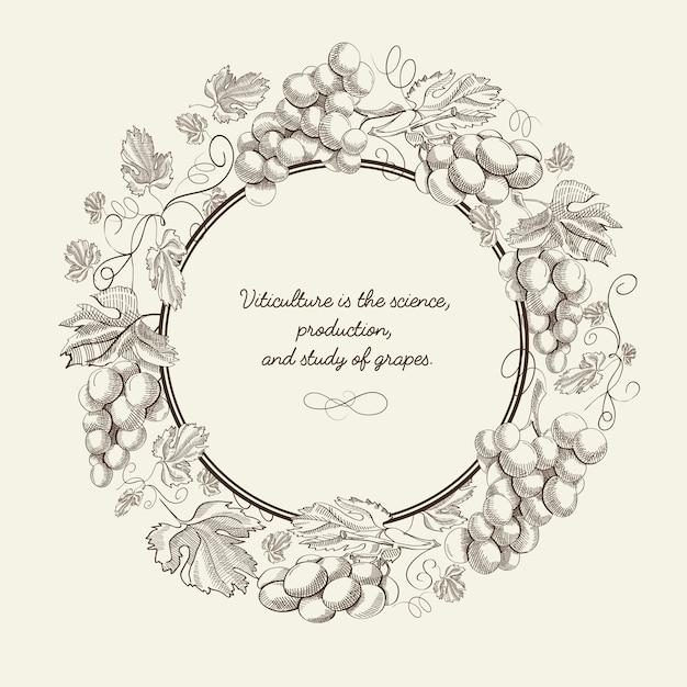 ブドウの丸いフレームの束と灰色の背景ベクトルイラストの碑文と抽象的な果物手描きポスター 無料ベクター