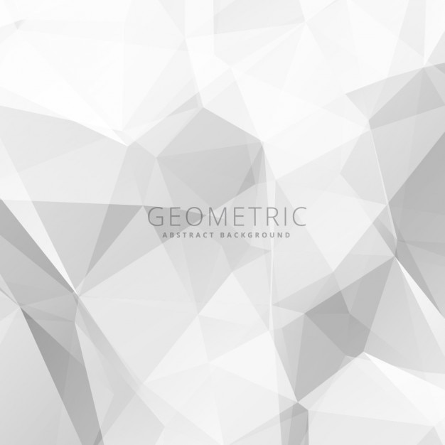 Gray And White Bedroom Furniture: Abstract Gray And White Background Vector