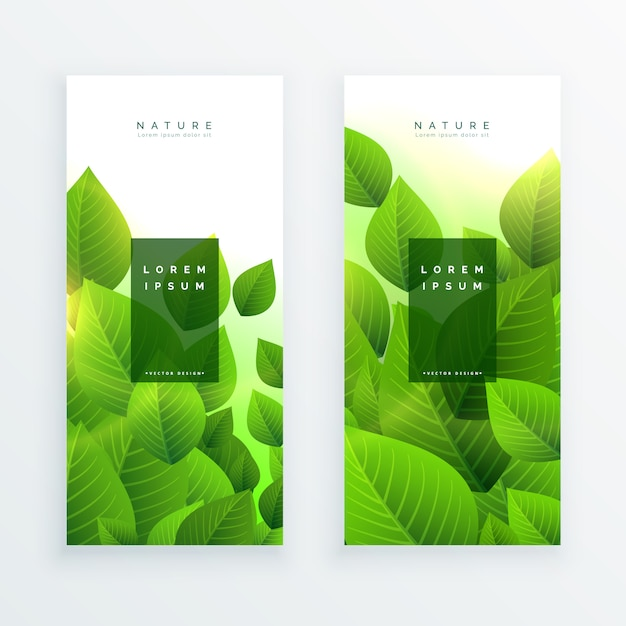 Abstract green leaves vertical banners Free Vector