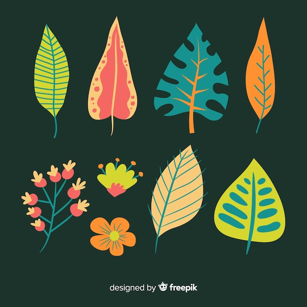 Abstract hand drawn flower and leaf collection Free Vector