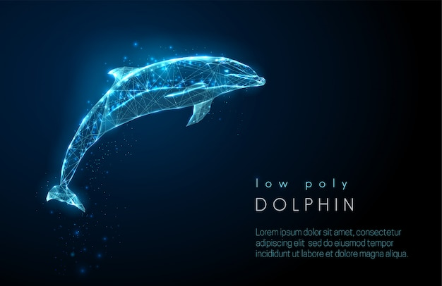 Abstract jumping dolphin. low poly style design. Premium Vector
