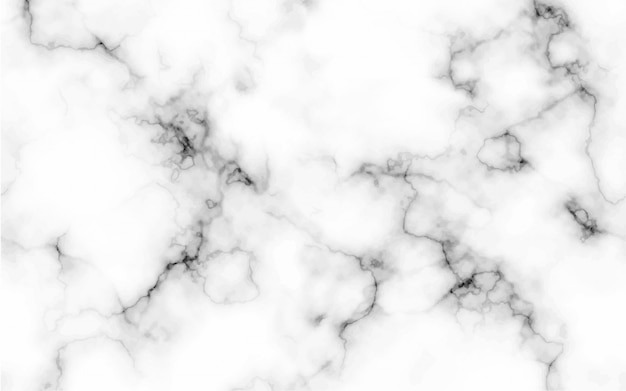 Abstract marble pattern texture black and white background Premium Vector
