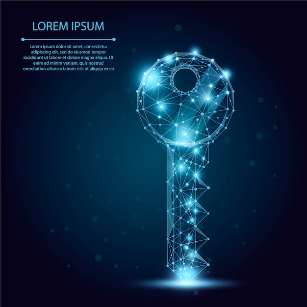 Abstract mash line and point key. Premium Vector