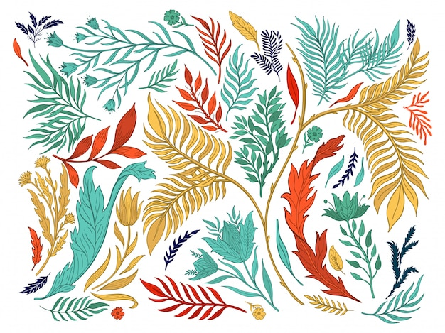 Abstract nature set collection hand drawn. Premium Vector