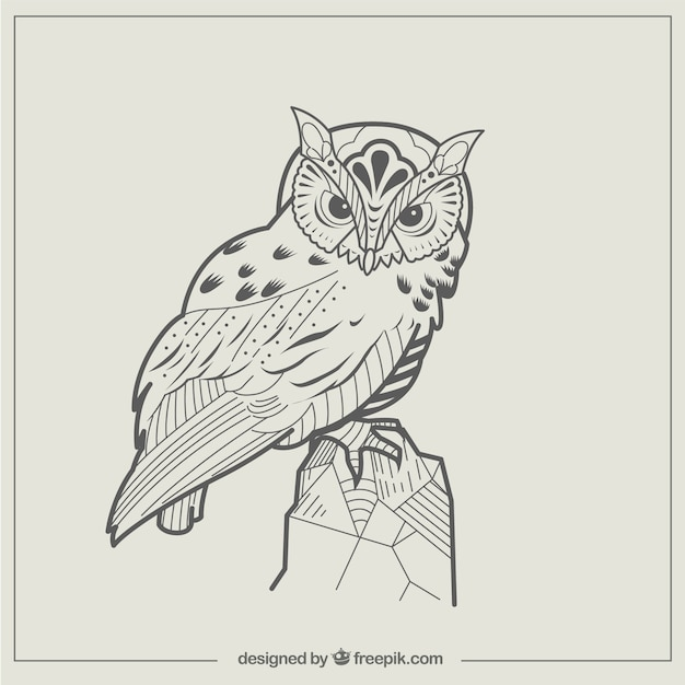 Abstract Owl Illustration Vector Free Download