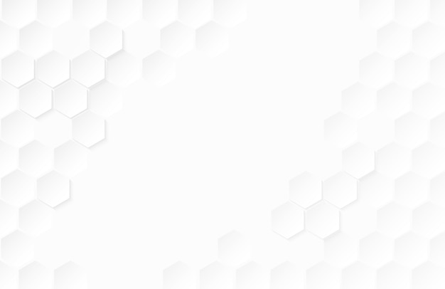 abstract paper hexagon white background  vector