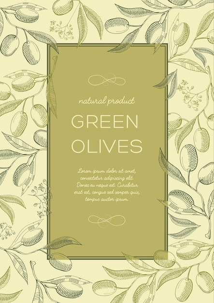 Abstract vintage natural green poster with text in frame and olives tree branches Free Vector