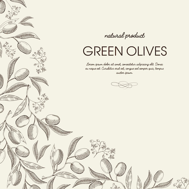 Abstract vintage natural template Free Vector