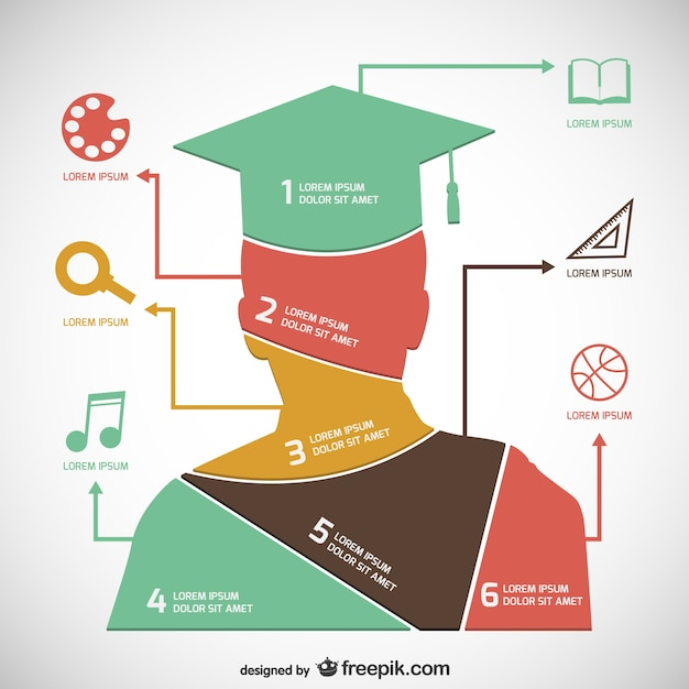 academic infographic template free vector
