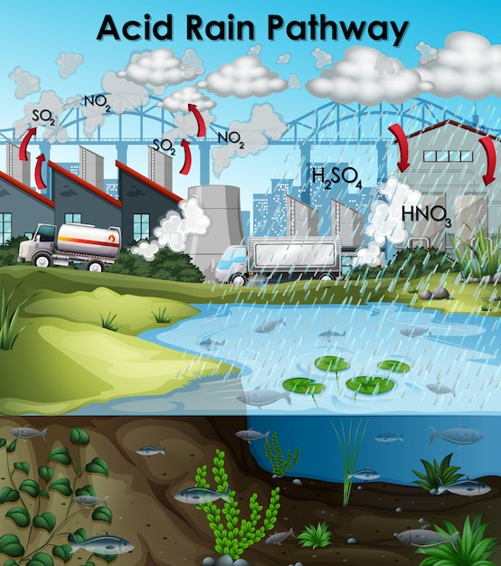 Acid Rain Diagram With Buildings And Water Vector