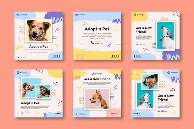Adopt a pet instagram posts collection Free Vector