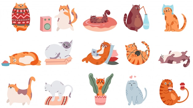 Adorable cats. cute dancing cat, funny angry kitty and love cat illustration set. domestic animal drinking coffee and sleeping. comic fat pet in sweater, doing yoga and eating stickers Premium Vector
