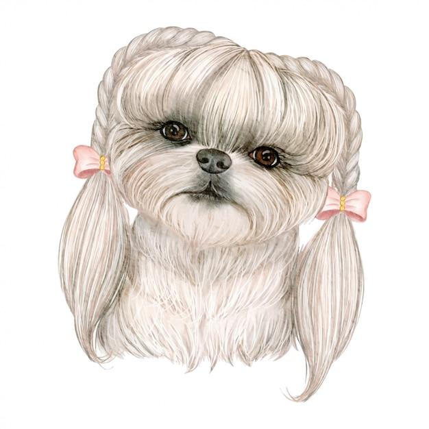 ひものリボンの水彩イラストの髪の愛らしいかわいい犬 Premiumベクター