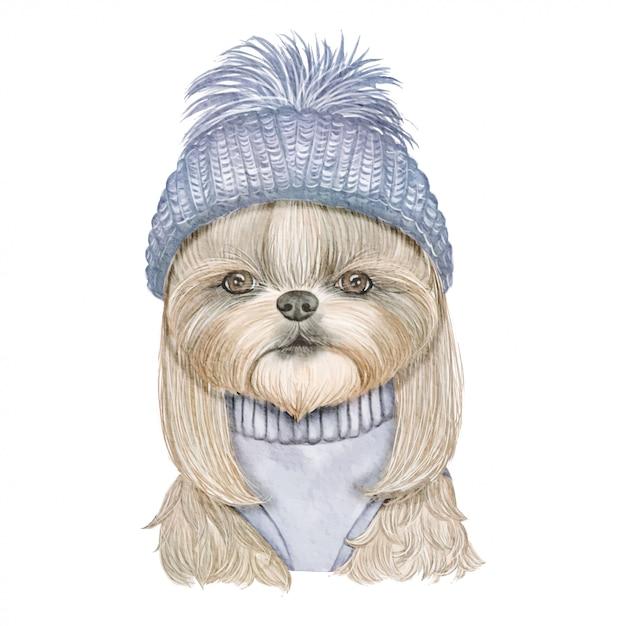 ニット帽子水彩イラストと愛らしいかわいい犬 Premiumベクター