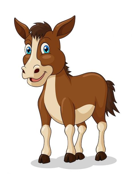 Adorable horse cartoon Premium Vector