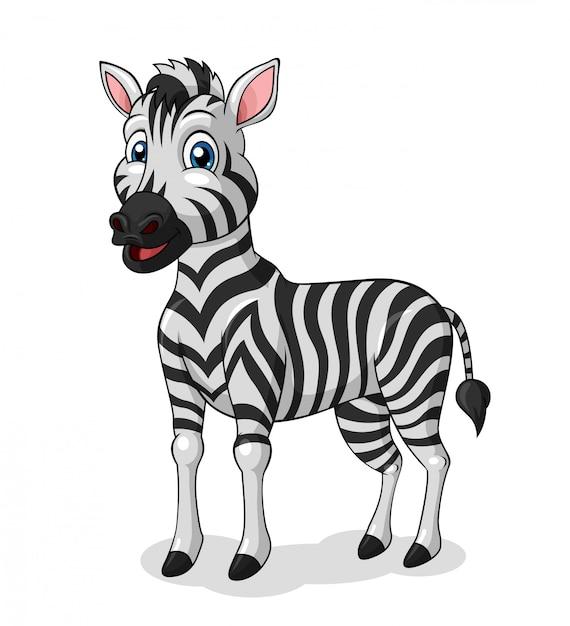 Adorable zebra cartoon Premium Vector