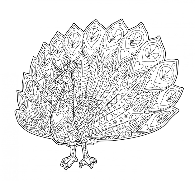 Adult coloring book page with funny peacock Premium Vector