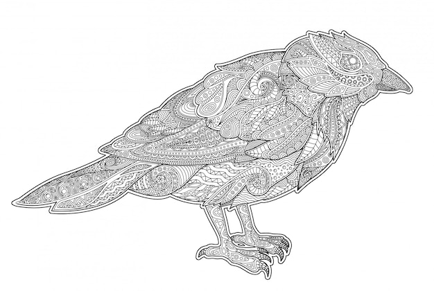 Adult coloring book page with little tit Premium Vector