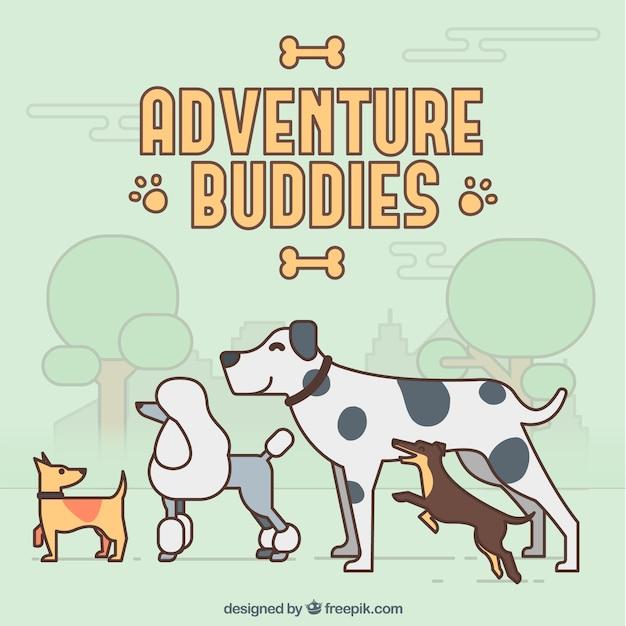 Adventure buddies