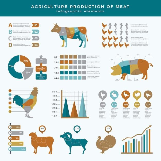Сельское хозяйство сельское хозяйство инфографики. еда животных фермы технологии питания бизнес инфографики шаблон таблицы диаграммы Premium векторы
