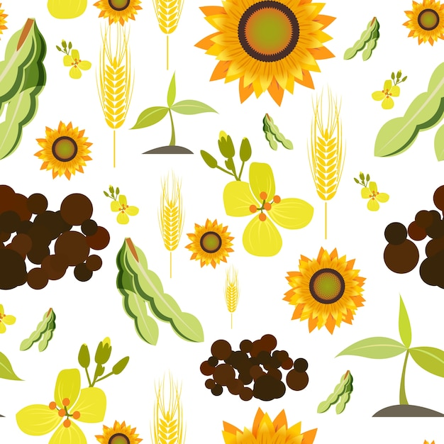 Agriculture farming organic food plant wheat\ sunflower seamless pattern vector illustration