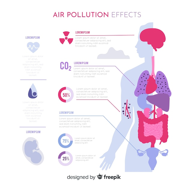 Air pollution effects on human body infographic Free Vector