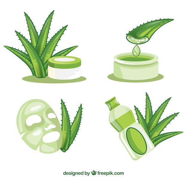 Aloe vera collection Free Vector