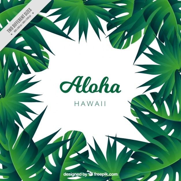 Hawaiian Aloha Background