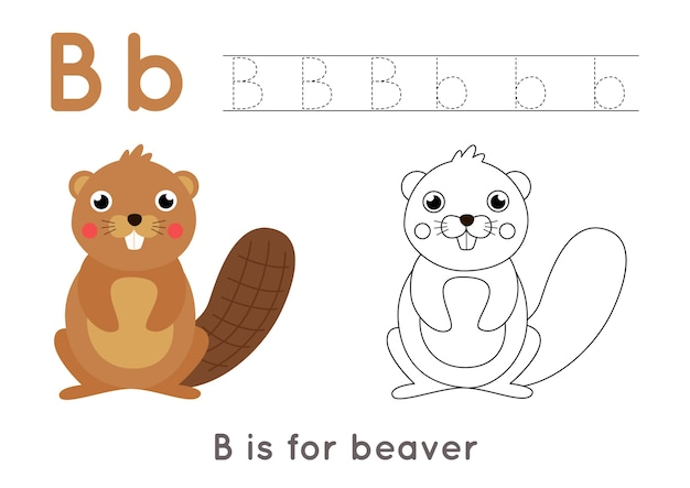 Alphabet coloring page for kids. basic writing activity. tracing abc letters worksheet. letter b with cute cartoon beaver. Premium Vector