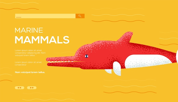 Флаер с концепцией дельфина реки амазонки, веб-баннер, заголовок пользовательского интерфейса, введите сайт. . Premium векторы