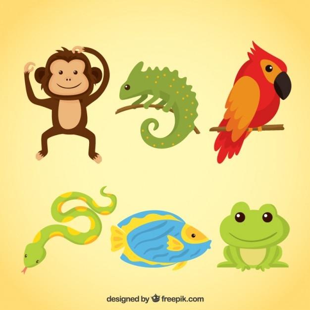 Amusing animals and reptiles Free Vector