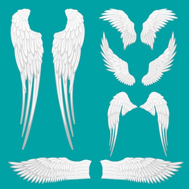 エンジェルホワイトウィングセットが分離されました。入れ墨またはマスコットdeのために設定された紋章の翼。さまざまな形の鳥の羽。抽象的な天使の羽のスケッチコレクション。翼ラベルサイン。図 Premiumベクター