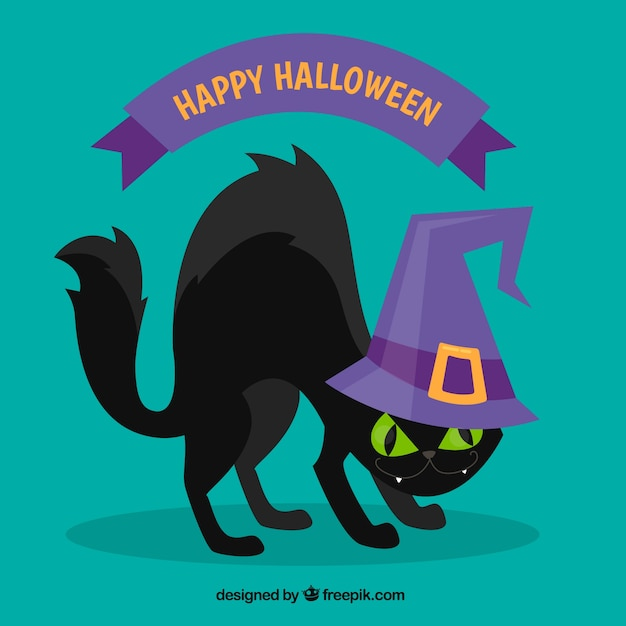 Angry black cat background with witch\ hat