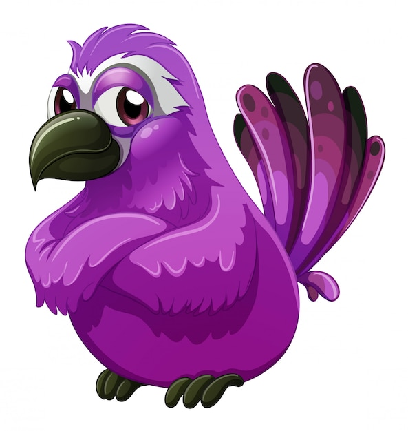 An angry-looking bird Free Vector