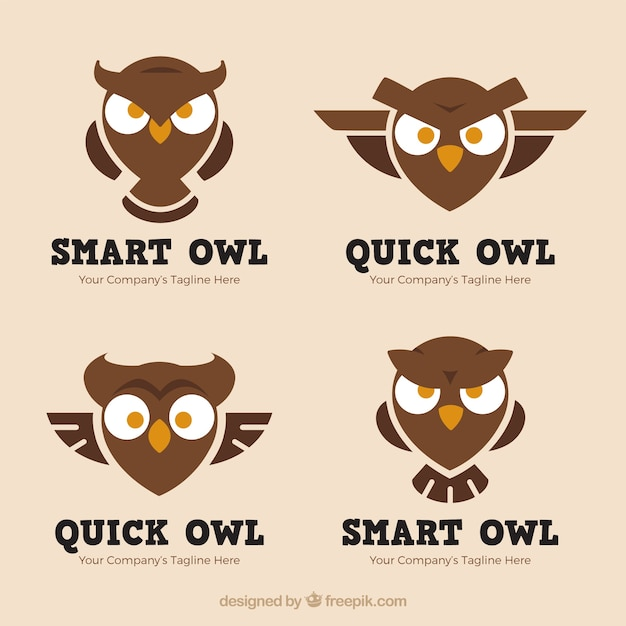 Angry owl logo collection