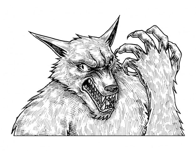 Angry werewolf, hand drawn illustration Premium Vector