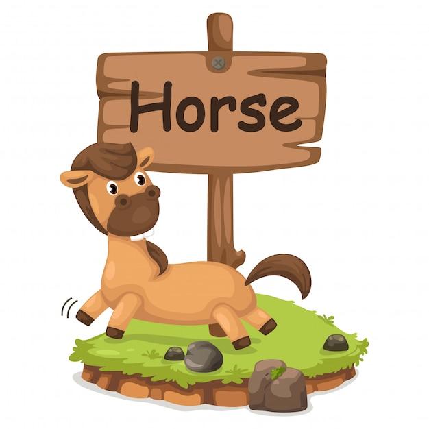 Animal alphabet letter h for horse Premium Vector