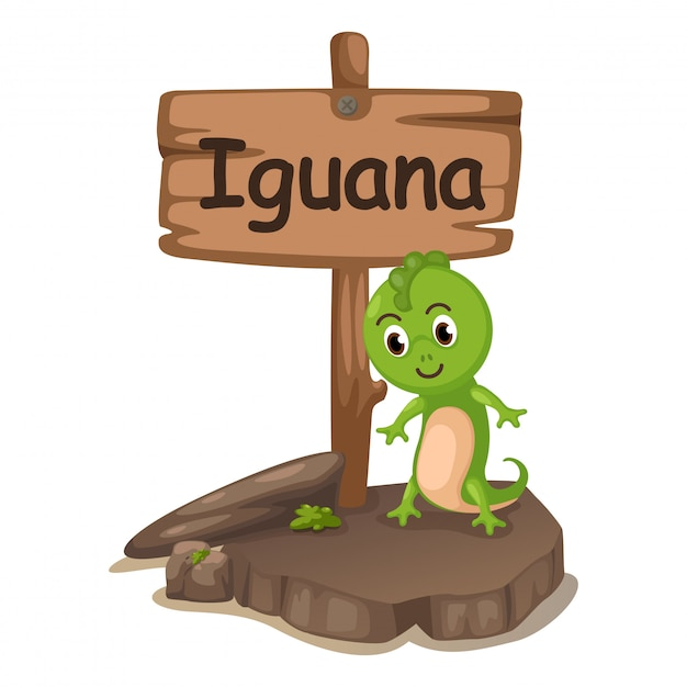 Animal alphabet letter i for iguana Premium Vector