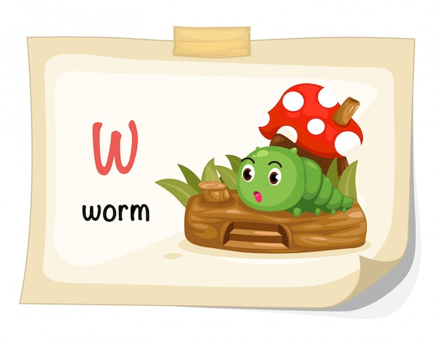 Animal alphabet letter w for worm illustration vector Premium Vector