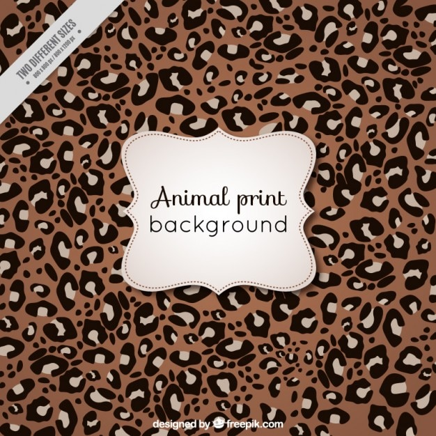 Animal background of leopard Free Vector