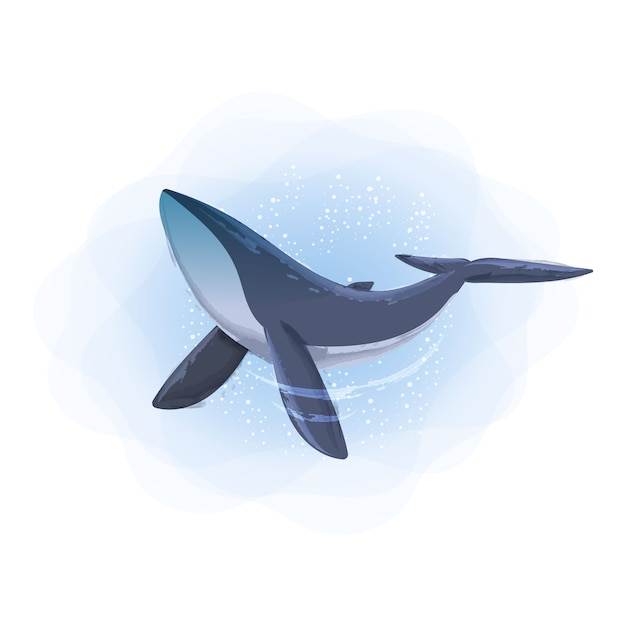 Акварельные иллюстрации животных синий кит Premium векторы