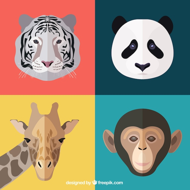 Animal faces Free Vector