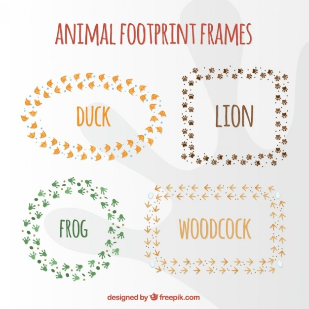 animal footprint frame collection vector free download