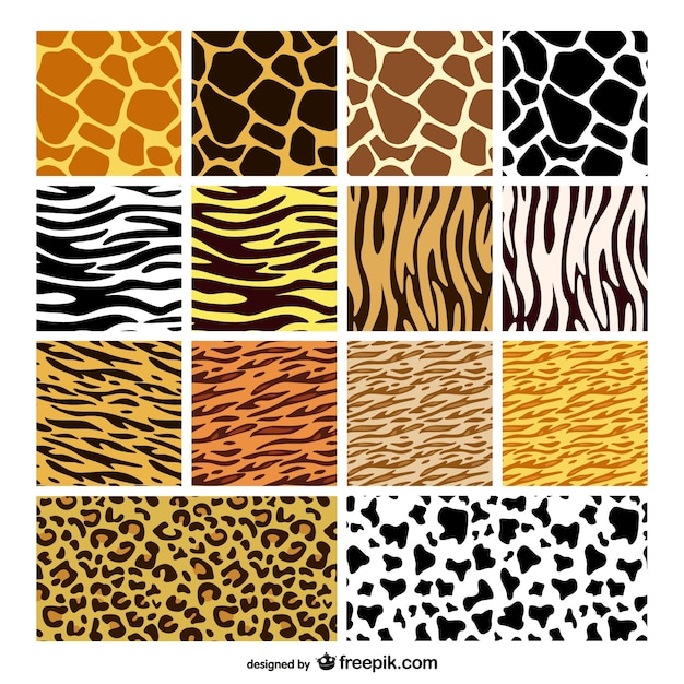 animal print patterns collection free vector