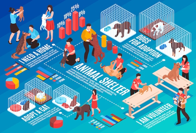 Animal shelter isometric flowchart with human characters dogs and cats for adoption vector illustration Free Vector