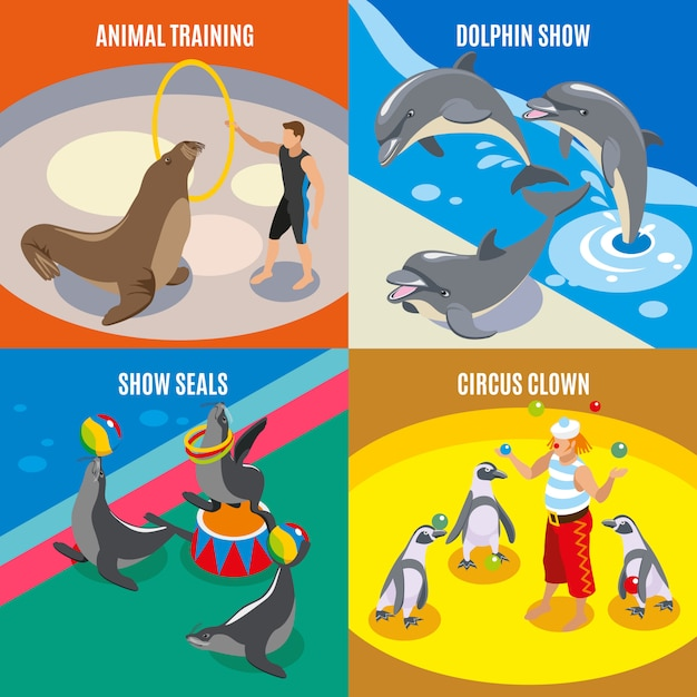 Animal training circus clown dolphin and seals show isometric compositions Free Vector