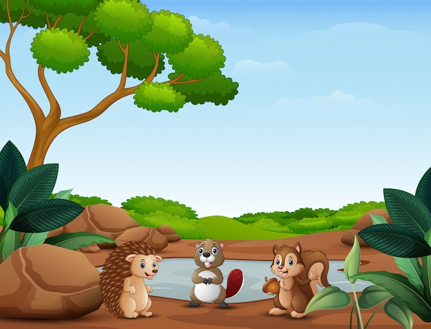 Animals cartoon standing near the small pond Premium Vector