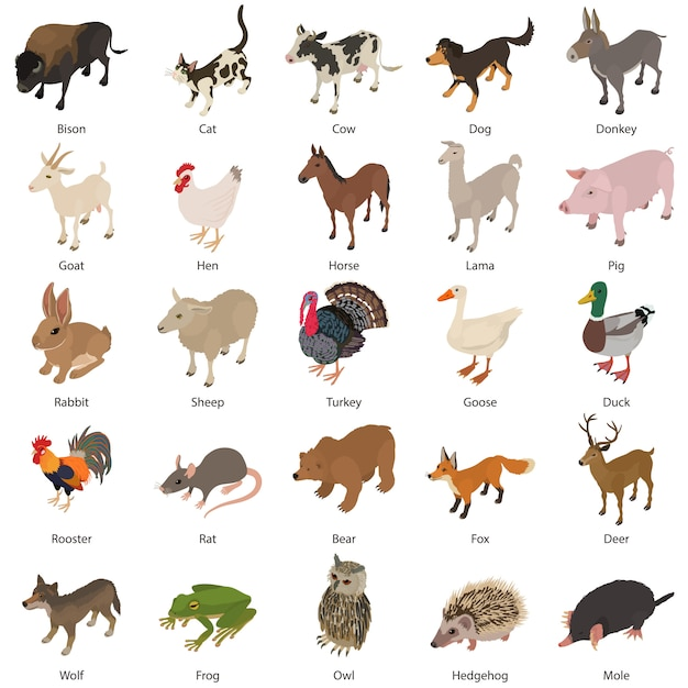 Animals collection icons set. isometric illustration of 25 animals collection vector icons for web Premium Vector