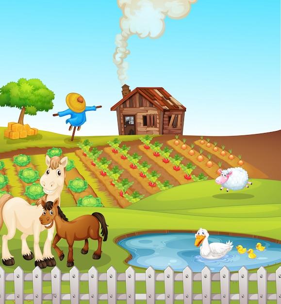 Animals on farm scene Free Vector